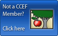 Apply for CCEF Apple Awards: Deadline is December 1st